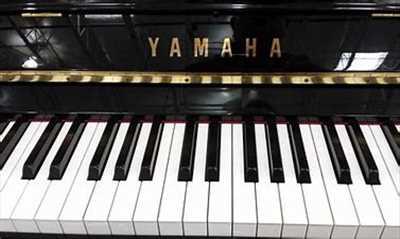Photo de réparation d'instrument de musique n°2767 dans le département 36 par André William Accordeur Réparateur de piano