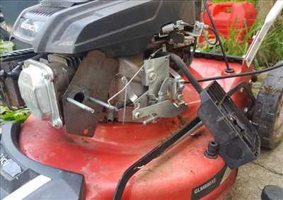 Photo de réparation de tondeuse à gazon n°3344 à Charleville-Mézières par STEPHANE