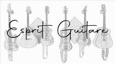 Exemple de réparation d'instrument de musique n°3713 à Fort de France par Esprit Guitare