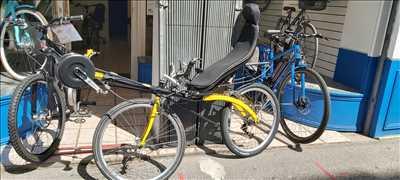 Photo de réparation de vélo n°3754 à Lyon par le réparateur CENTAUR BIKE