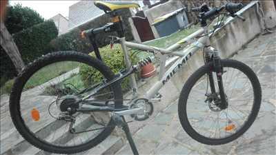 Photo de réparation de bicyclette n°3867 dans le département 77 par repar'coul