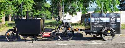Photo de réparation de vélo n°3986 à Elbeuf par le réparateur Berti Cycles