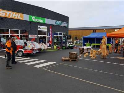 Exemple de réparation de tondeuse à gazon électrique n°425 à Amiens par GDM motoculture