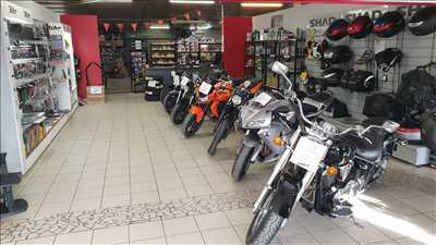 Photo de réparation de moto n°780 à Vienne par PIECES MOTO AGPL